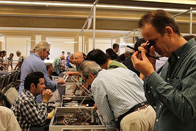 diamond ring buyers watch jewelry miami show